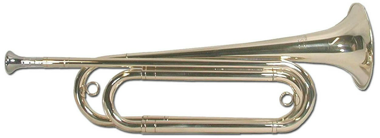 figure 1-US Regulation Bugle